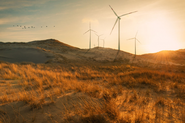 Édition spéciale dans la revue Analyse de politiques : Grandes idées pour une prospérité durable