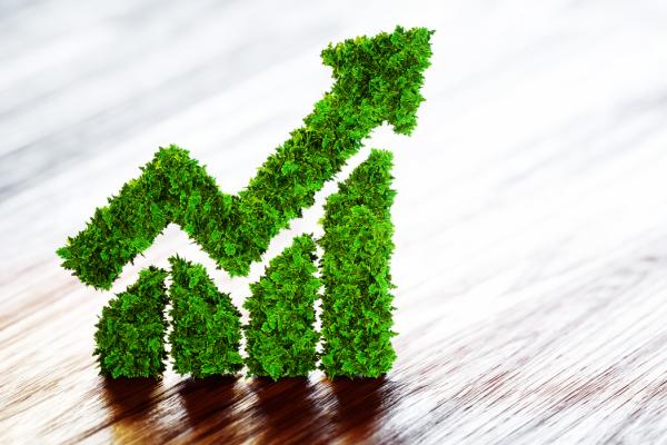 Obligations et Changements Climatiques | Finance verte: l'état du marché – 2018