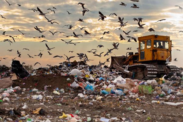 Outils économiques pour réduire les déchets ménagers et leurs émissions de gaz à effet de serre
